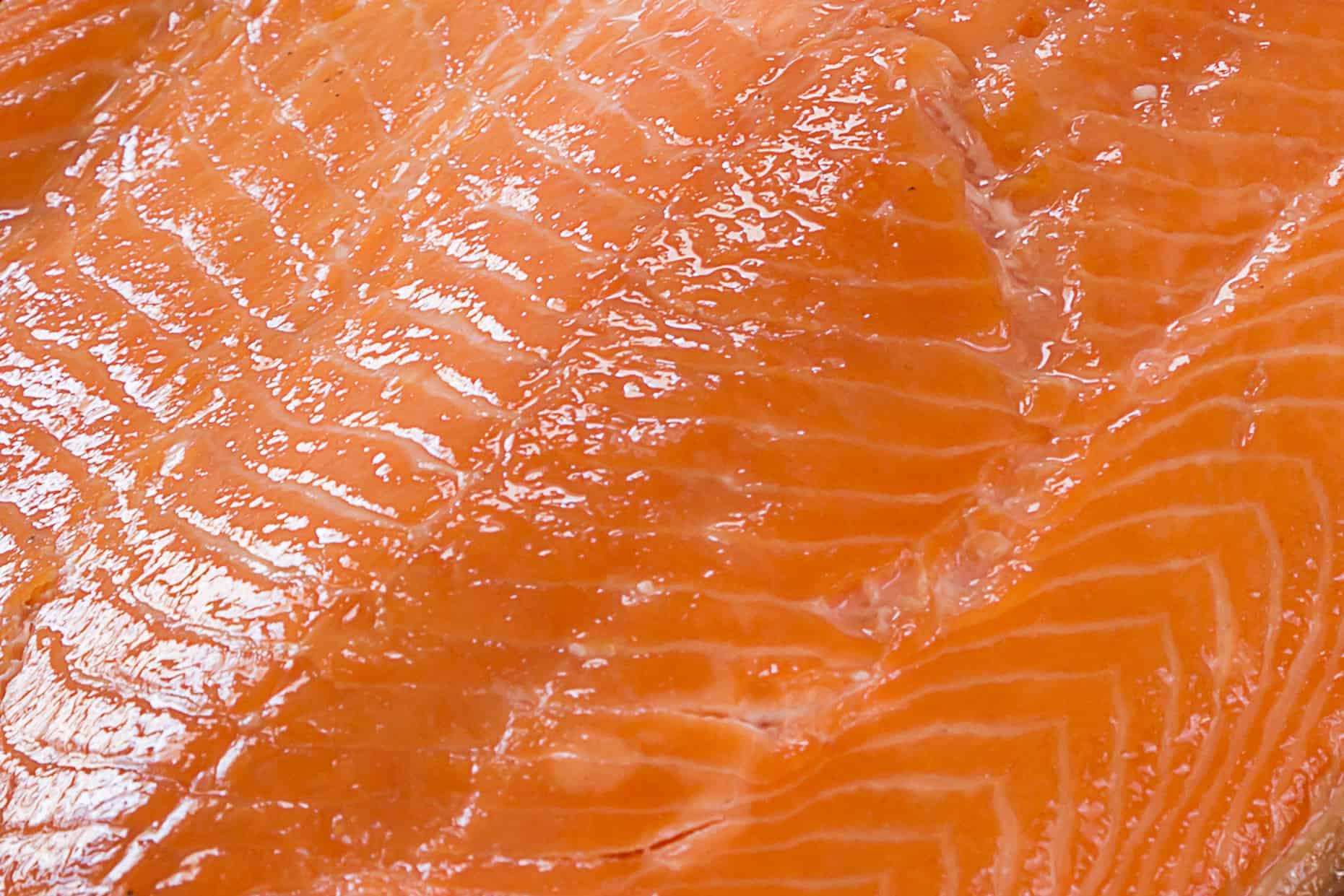 Water dog kippered salmon for Water dog fish